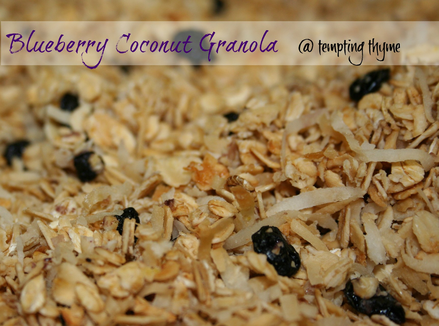 Blueberry Coconut Granola-Tempting Thyme