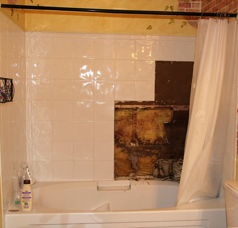 Master Bathroom: Dang Shower!