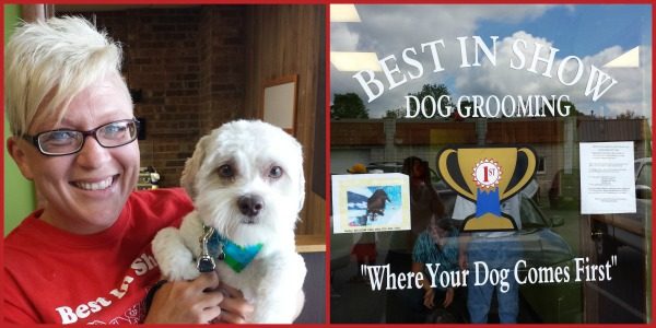 Dog Grooming in Hamilton,OH