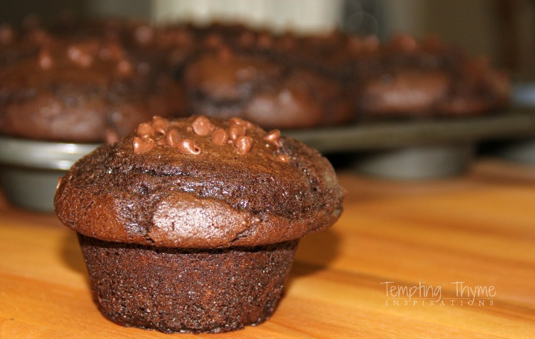 Chocolate Chip Muffins-Breakfast Recipes